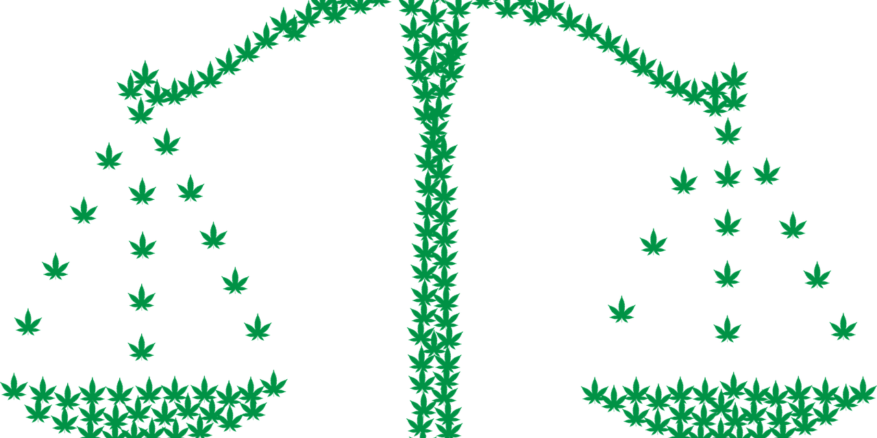 Luxemburg plant strenge Regeln für die Cannabis-Zuteilung