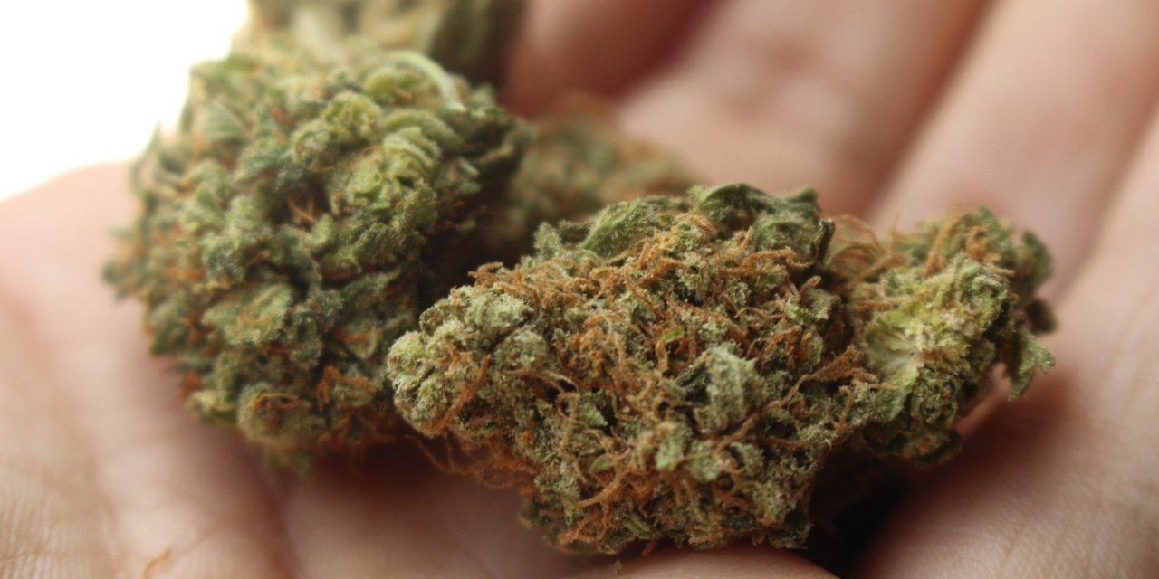 Lahr: Polizei erwischt 21-Jährigen mit drei Kilogramm Cannabis